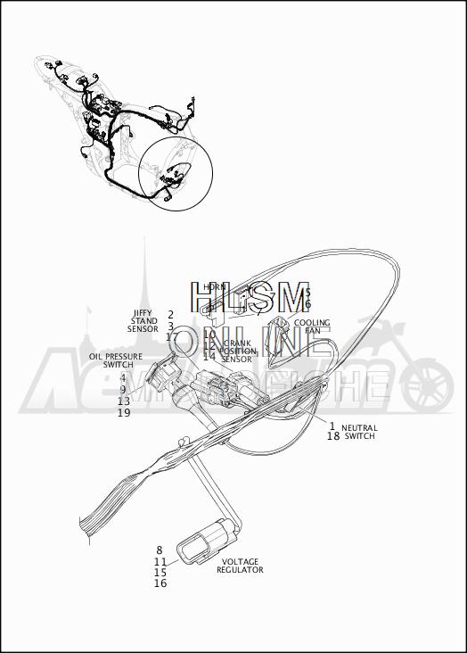 Запчасти для Мотоцикла Harley-Davidson 2019 XG500 STREET 500 (NA) Раздел: WIRING HARNESS_MAIN - NON-ABS (FRONT LOWER) | электропроводка главный жгут не ABS (перед нижний)