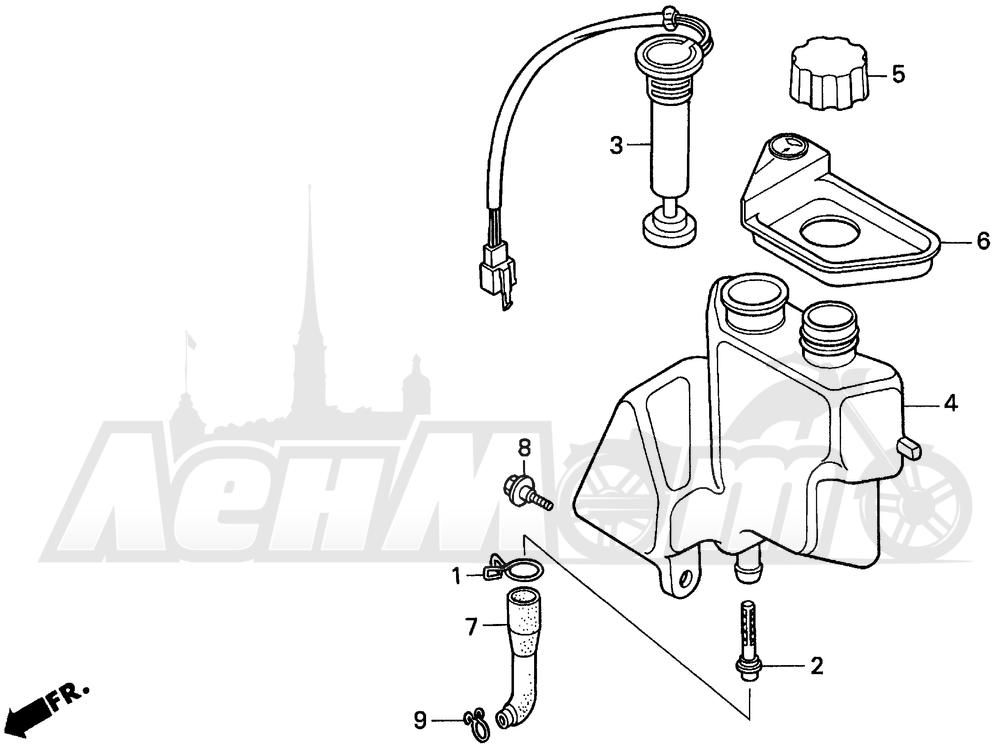 Запчасти для Мотоцикла Honda 1996 EZ90 Раздел: OIL TANK | маслобак