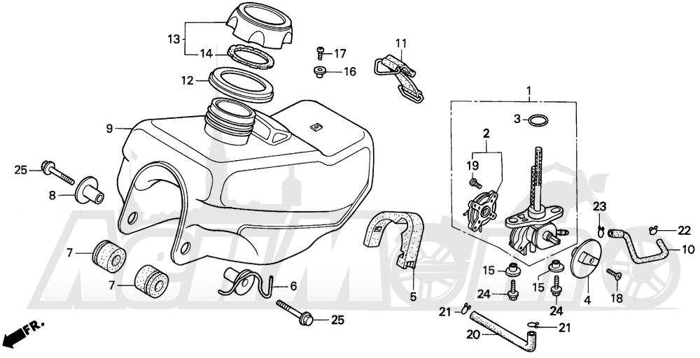 Запчасти для Мотоцикла Honda 1996 EZ90 Раздел: FUEL TANK | топливный бак