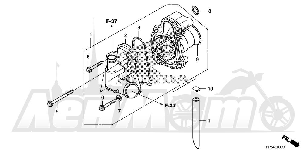 Запчасти для Квадроцикла Honda 2008 TRX700XX Раздел: WATER PUMP | водяная помпа