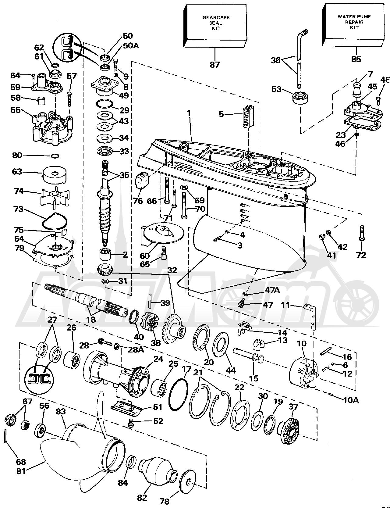 diagram of 1988 e200cxccr evinrude intake manifold diagram With diagram of 1988 e200cxccr evinrude intake manifold diagram and parts
